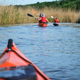Kayaking in Delta Neajlov